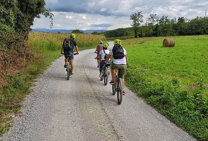 Bike Tour Vipava Valley